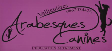 arabesques canines valliguieres