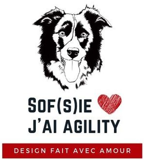 Sophie Pages illustratrice Chiens Agility